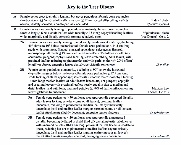 Dichotomous key related keywords dichotomous key long for Dichotomous key template